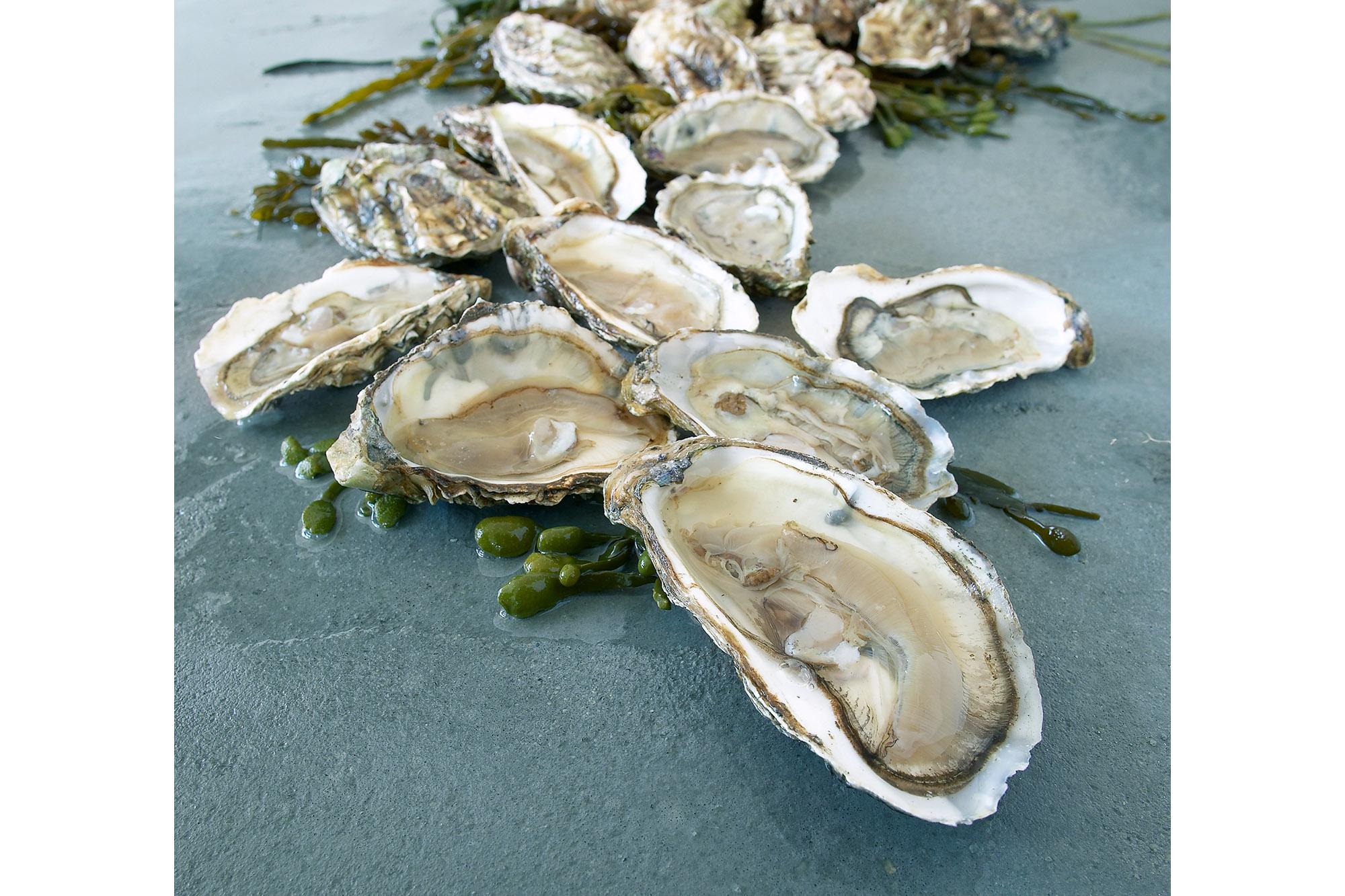 SPUISERS food fotografie oester