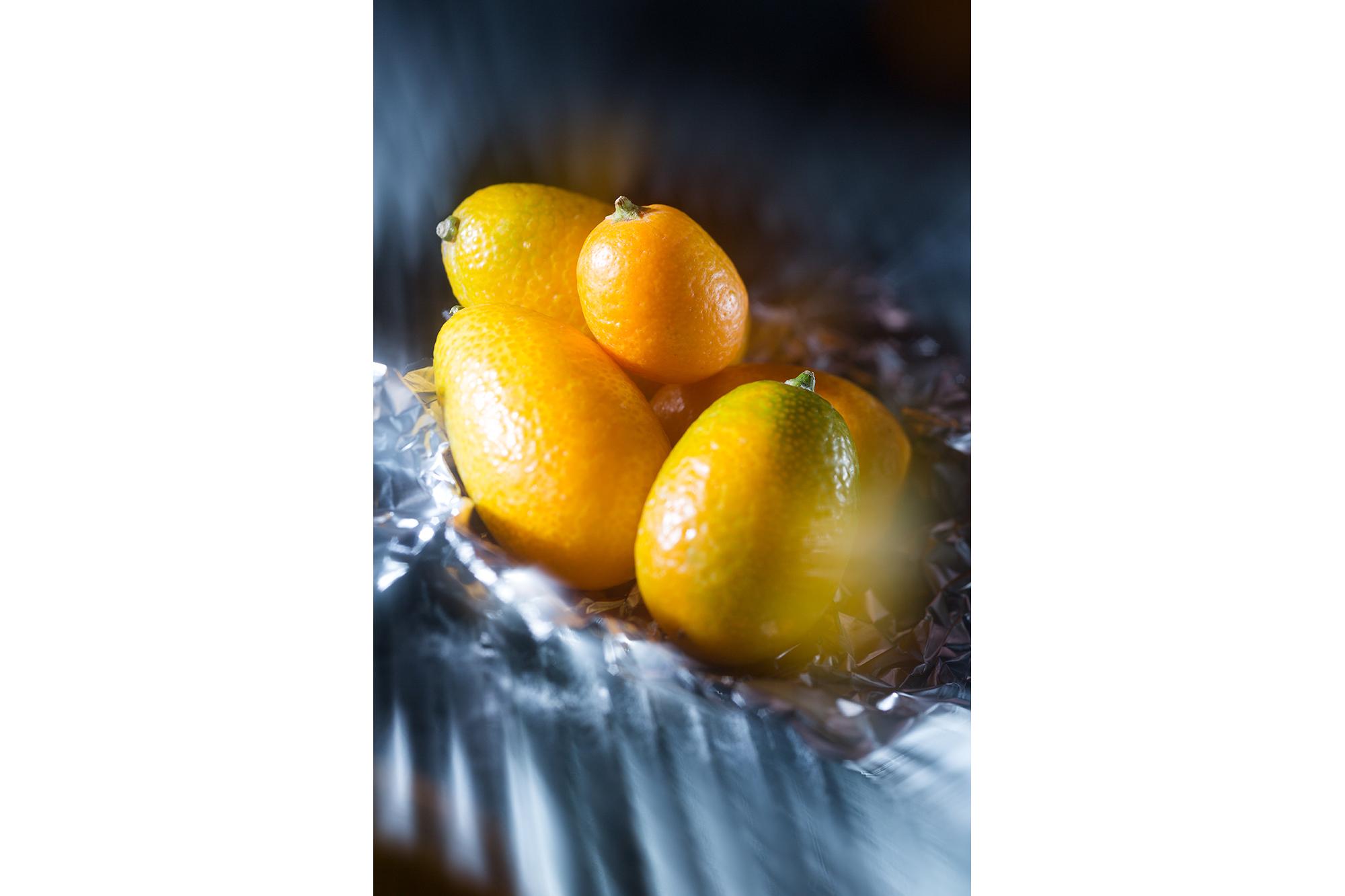 SPUISERS kumquat vrijwerk expositie