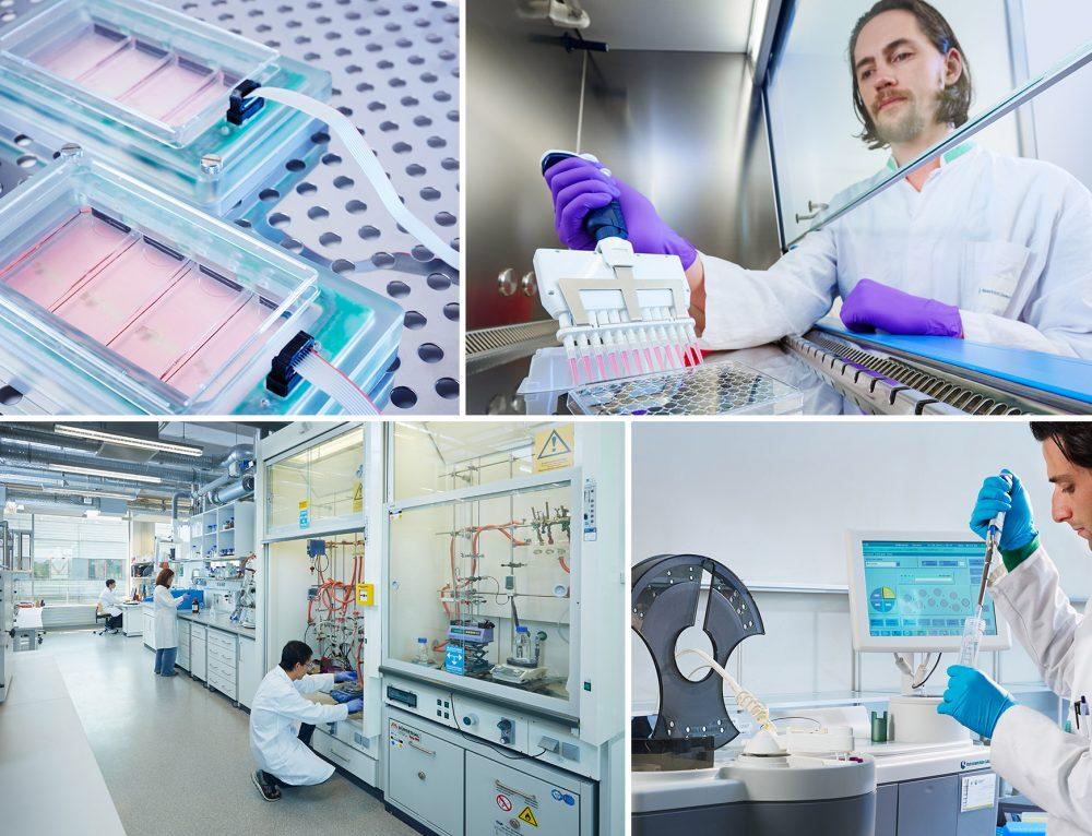 BioMiMedics, Maastricht University