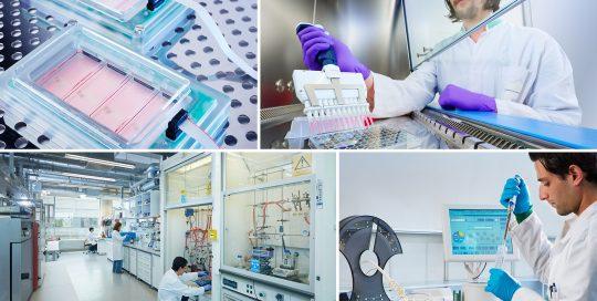 SPUISERS universiteit maastricht biomimedics