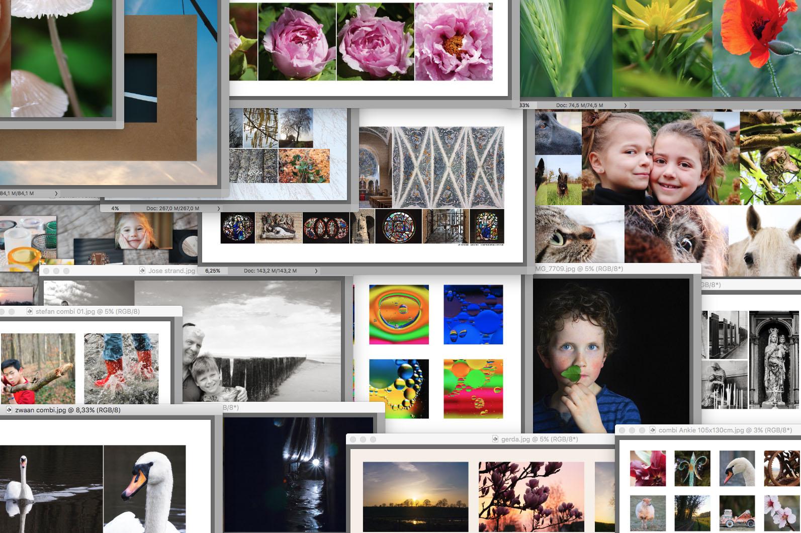 SPUISERS cursistenwerk basiscursus digitale fotografie
